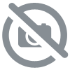 Set de Drap et taies indien